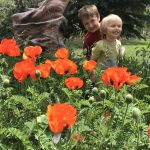 kids and poppies